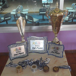 all-stars-trophies